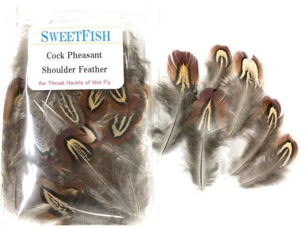 画像1: Cock Pheasant shoulder Feather (1)